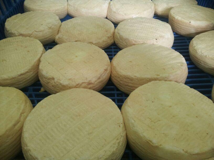 queso-corteza-lavada