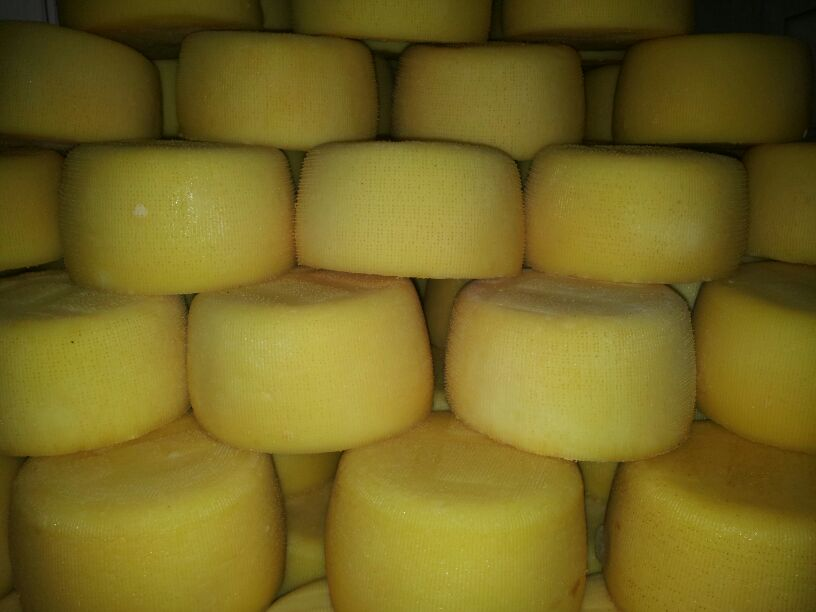 quesos-nata-cantabria